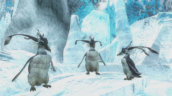 Lodar Caves Penguins