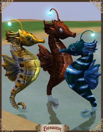 Seahorse Bundle