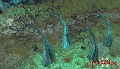Creepy Cypress Trees