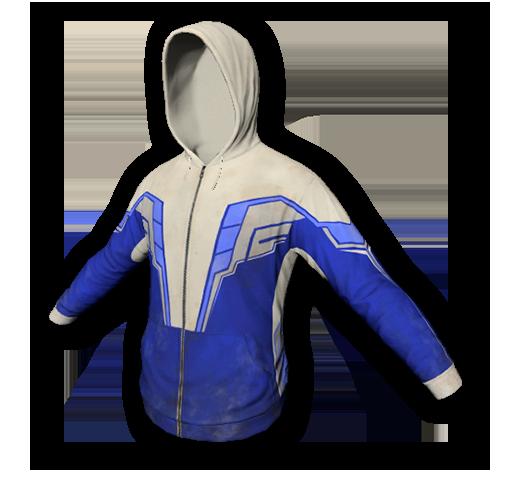 Pro gamer hoodie skin (uncommon)