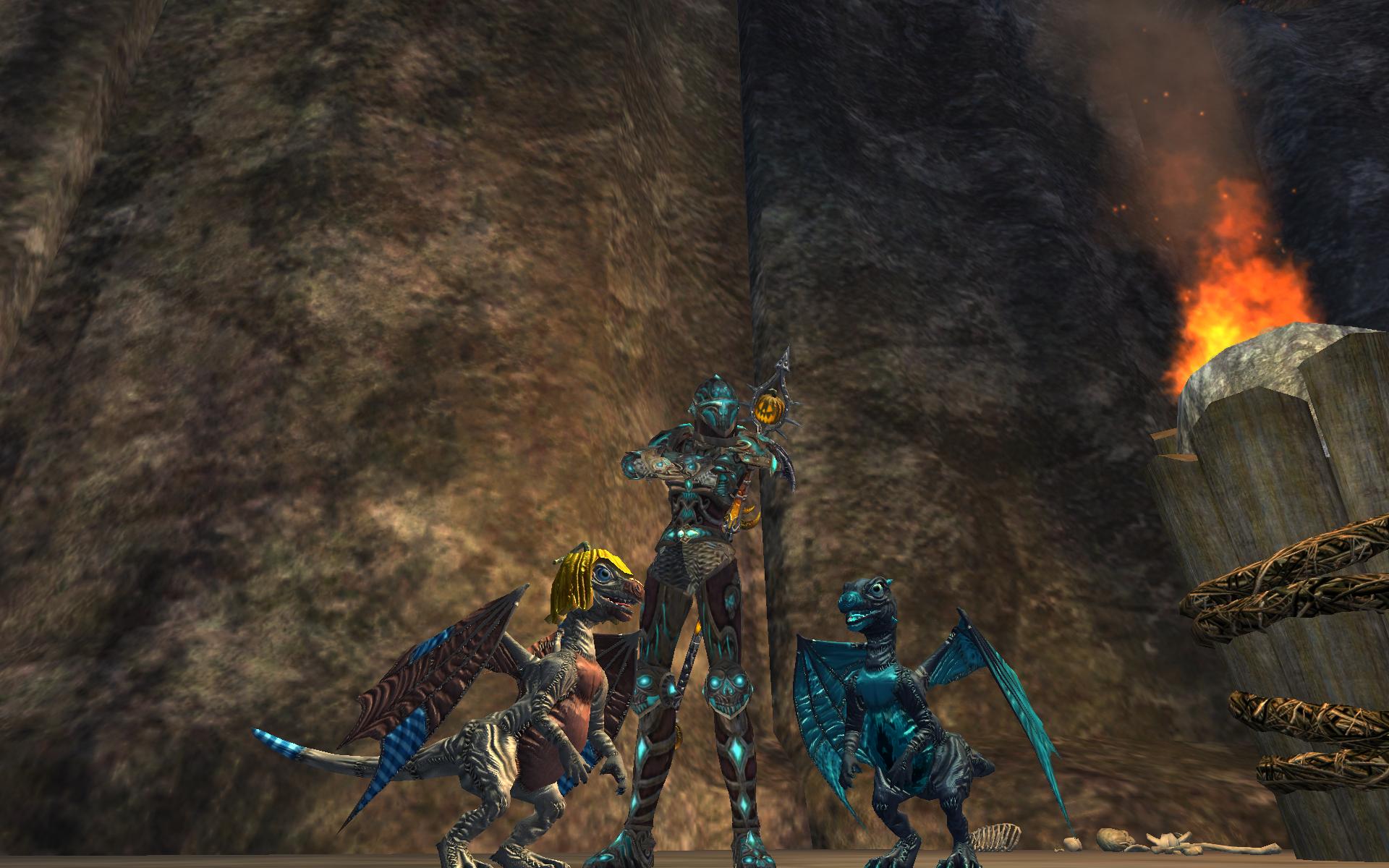 Armor and Burbur Pet