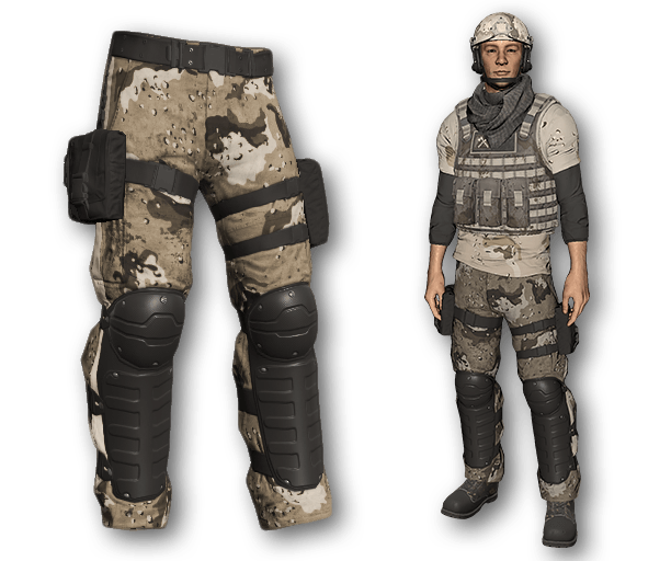 Desert Warfare Tactical Pants (Common)