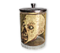 Preserved Zombie Head Recipe