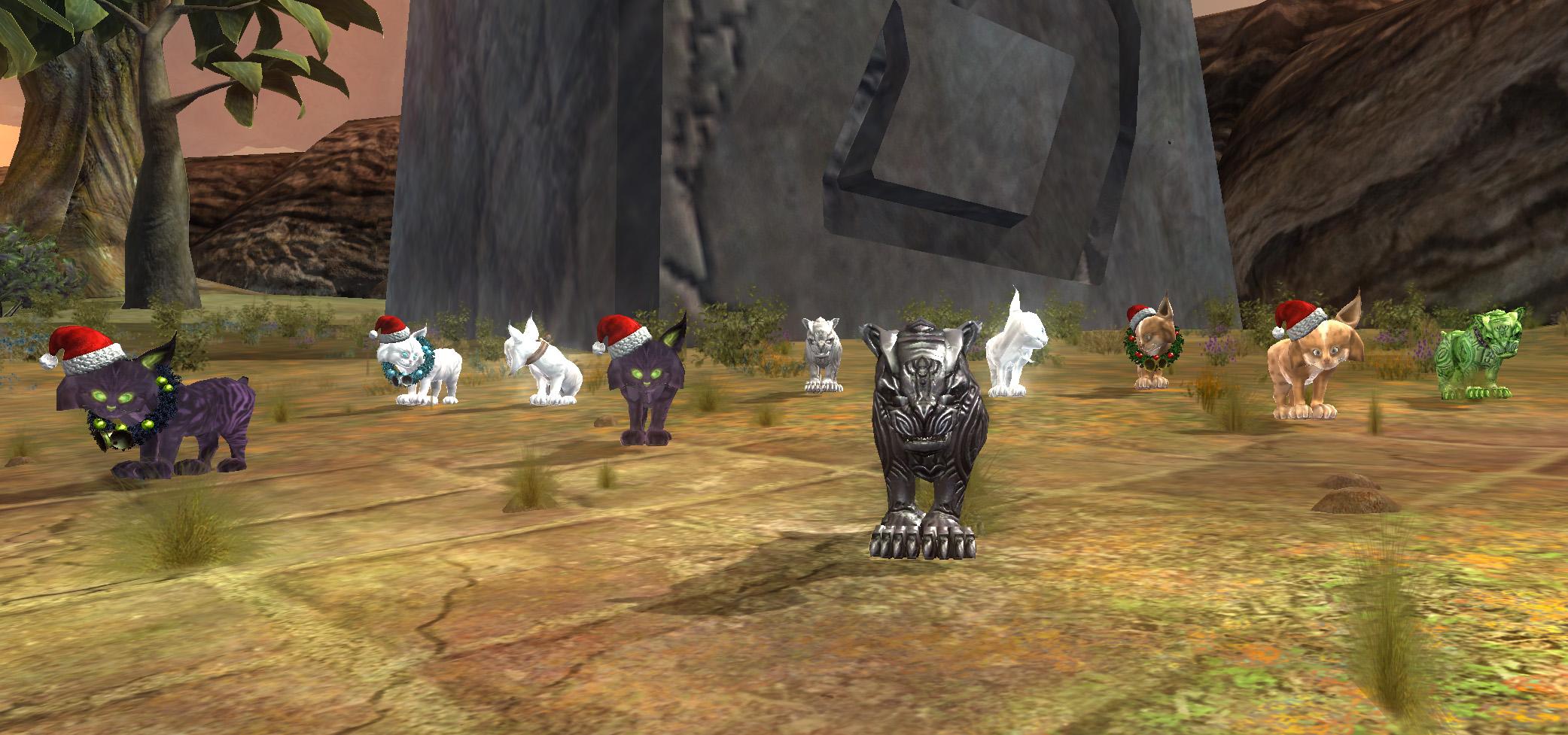 Black Bag O' Cats